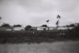 film photography amtrack san diego nicole caldwell 103