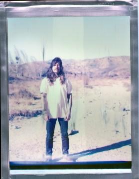 8x10 color polaroid desert