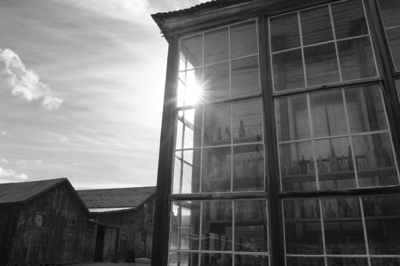 bodi ghost town nicole caldwell photography 12