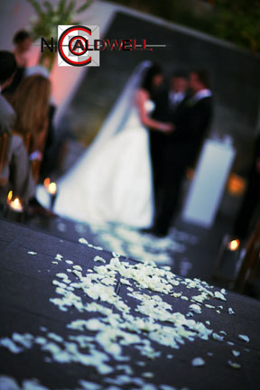 seven_degrees_laguna_beach_photo_by_nicole_caldwell_wedding_19.jpg