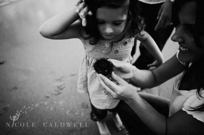 laguna_beach_family_photographer_nicole_caldwell_saboine_0011