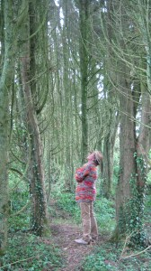 Jamie admiring the tall, ancient trees.