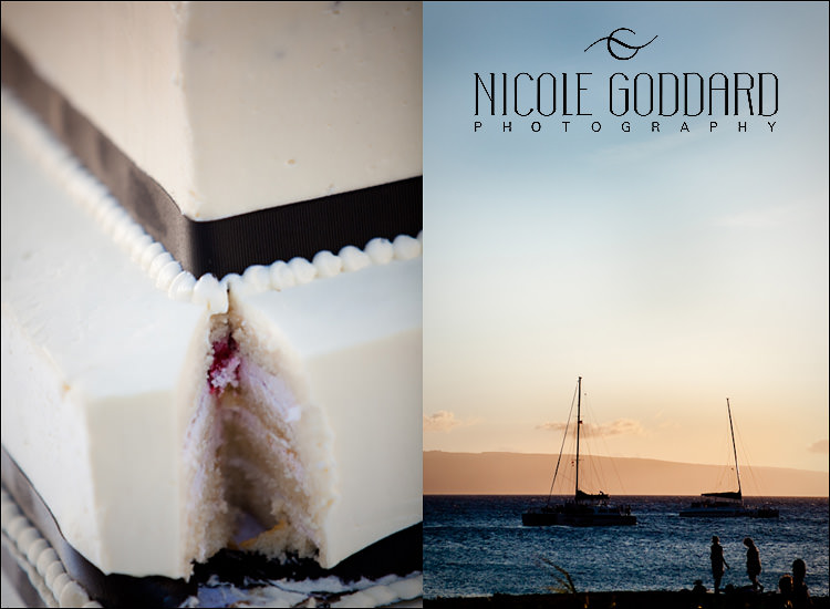 049_090309_nicolegoddard_cake detail and sail boat