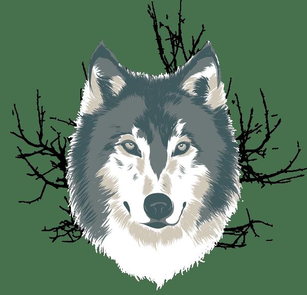 Wolf Illustration - Artwork Nicole Hanusek
