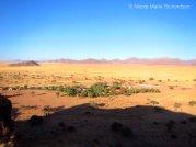 View of Namib Desert Lodge