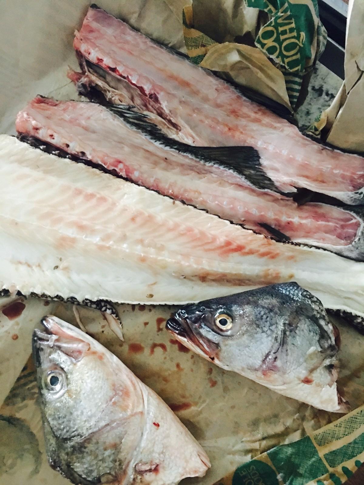 Fish Stock Prep