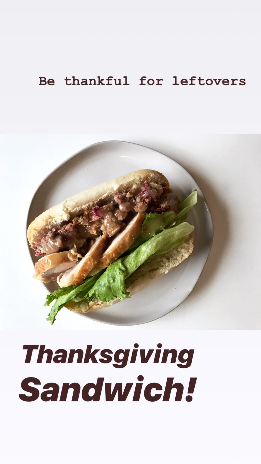 The Thanksgiving Sandwich