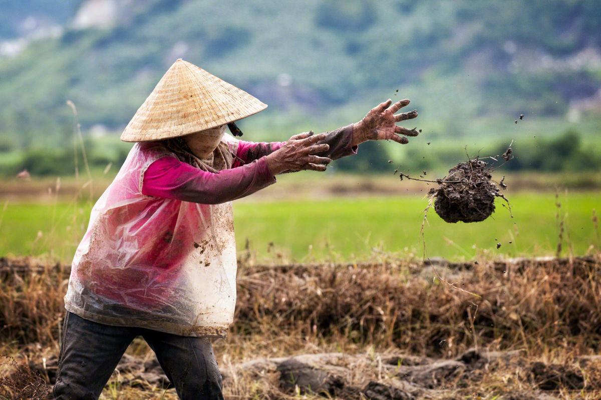 """Earth"" — Nha Trang, Vietnam."