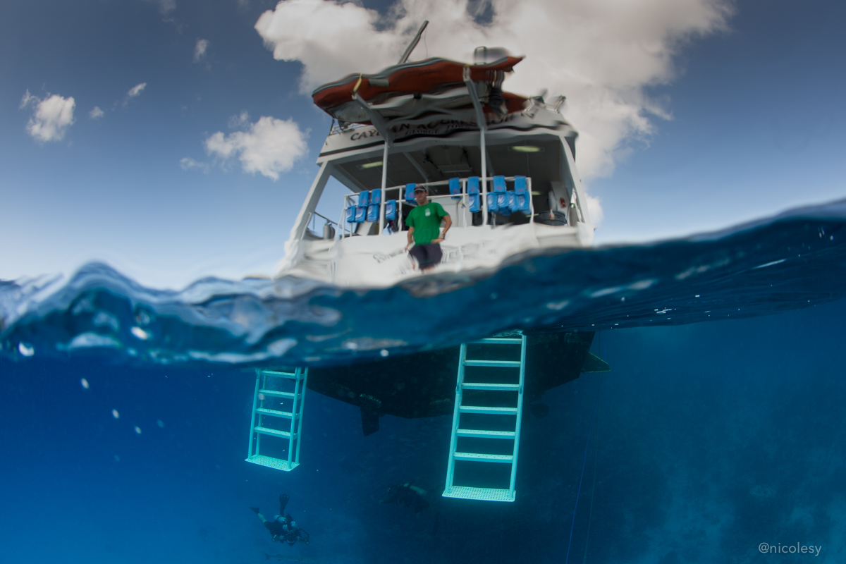 The Cayman Agressor IV diving boat
