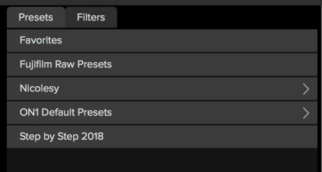 This shows what the Presets panel looks like when it has nested presets.