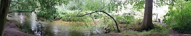 Swalmen