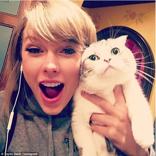 taylor-swift-donates-five-thousand-dollars-to-fan-who-passed-away-in-car-accident