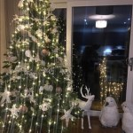 Megan McKenna's beautiful tree