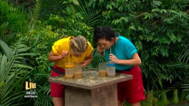 Celebrities Take Part In First Live Trial Of 2016's I'm A Celebrity