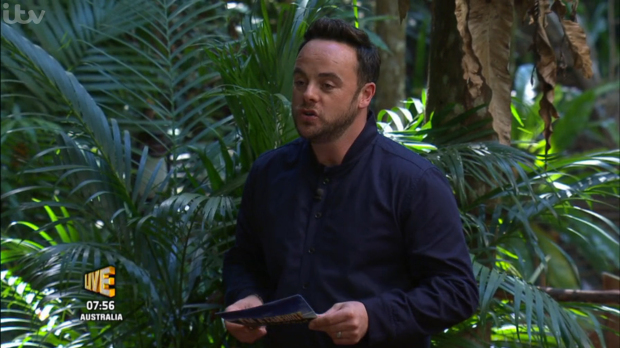 ITV Apologise After Splitting Up Ant And Dec During I'm A Celebrity Show