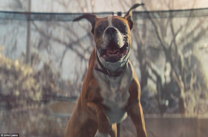 New Christmas John Lewis TV Advert Is Published!! WATCH HERE!!!