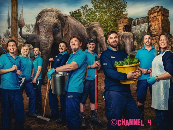 The Secret Life of The Zoo Is Returning To TV Screens - YAYYY!!