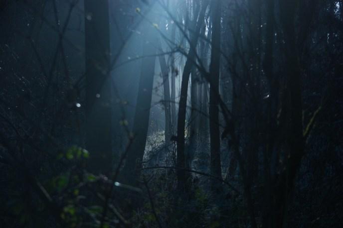 dark-1936954_1280