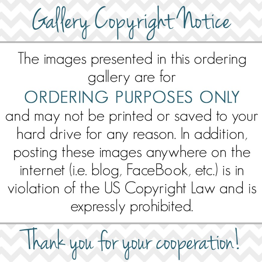 Online Gallery Copyright Notification