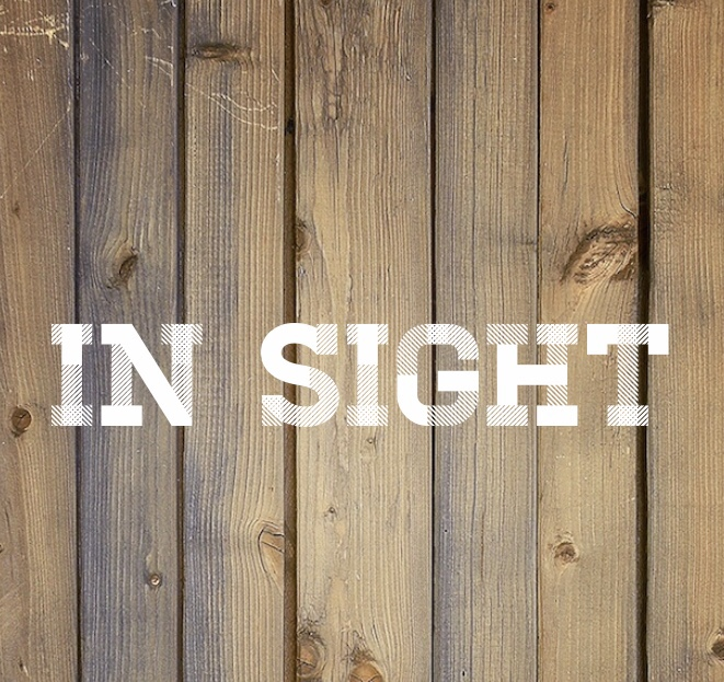 In Sight | A Christmas Short Story