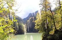 sehenswuerdigkeiten-dornbirn-reisetipps-vorarlberg-reisetipps-oesterreich-rappenlochschlucht-titel