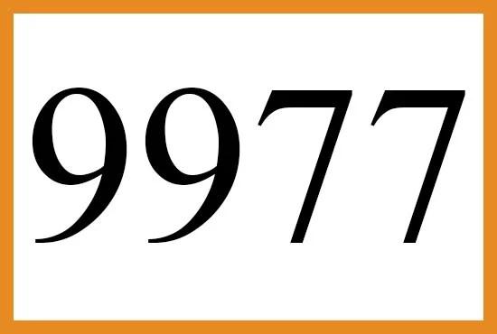 9977のエンジェルナンバーの意味について
