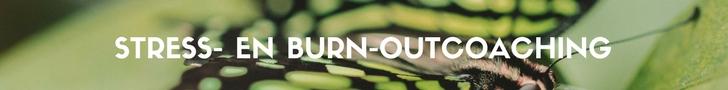 Stress- en burn-outcoaching in Wapenveld ( Gemeente Heerde, omgeving Zwolle) voor een blijvend herstel en aanpak van spanning, stress en burn-out klachten. Mijn naam is Nico van Rossum, Burn-outcoach.