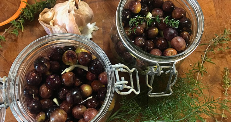 Comment faire ses olives en saumure