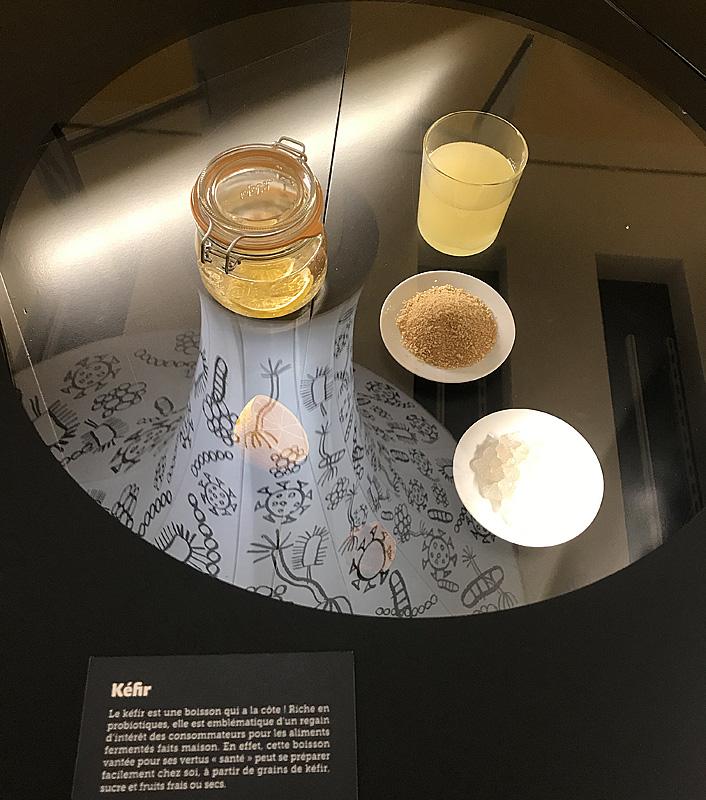 Kéfir de fruits. Musée de l'Homme