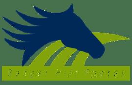 BH-Photo-logo