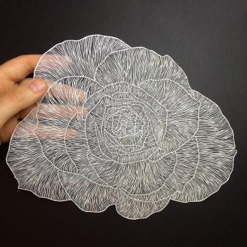 maudewhite-flower2