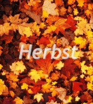Jesień po niemiecku – Erntedank