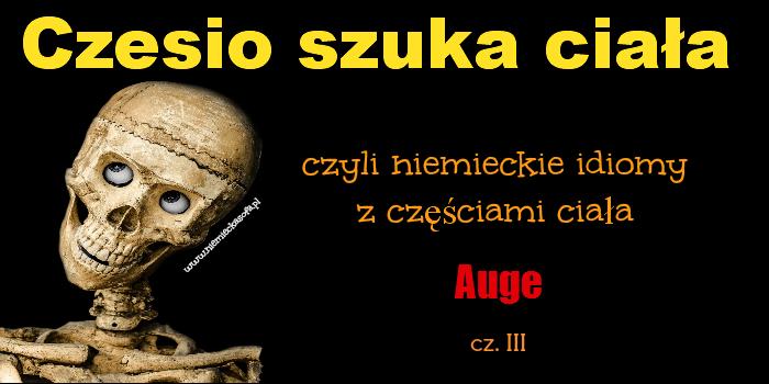 Czesio szuka ciała – idiomy z Auge cz.3