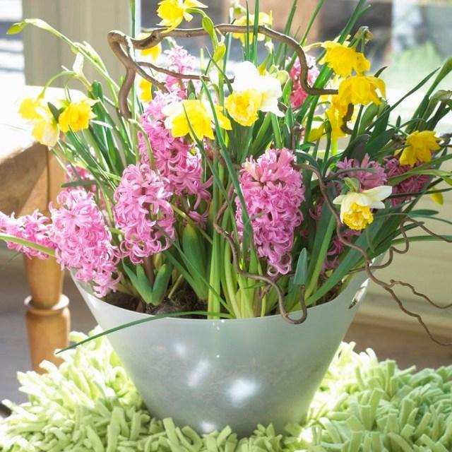 Pomysłowy stroik zhiacyntami wplastikowej misce. Fot.Flower Council of Holland/thejoyofplants.co.uk