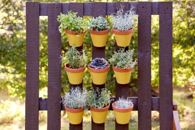 Ogród pionowy zpalety. Pomalowano ją farbą Viva Garden! Fot.Viva Garden