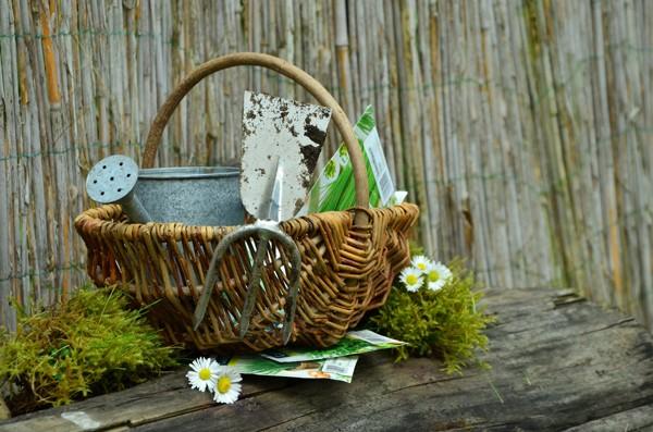 wejdź do sklepu ogrodniczego
