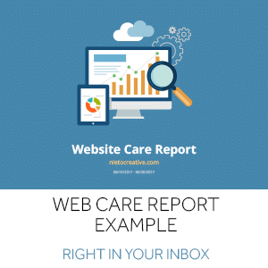 webcare_report-example