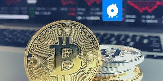 Elon Musk puts Bitcoin in bio on Twitter, value soars ...