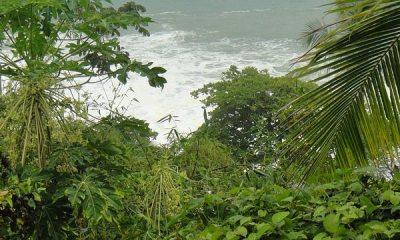Puerto Limon