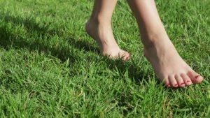 chodzenie po trawie