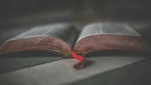 biblia 2021