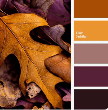Fall inspiration found in nature
