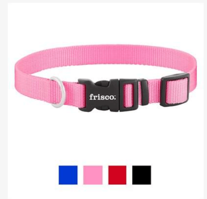 Gracie goes for simple yet stylish with a pink collar from Frisco