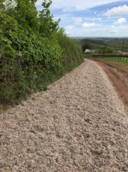 A section of our carpet fibre gallop