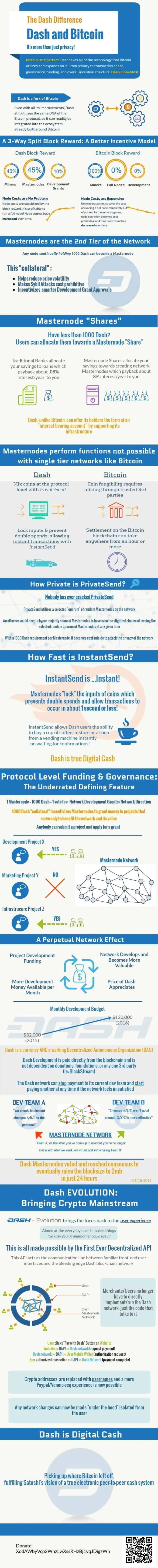 Dash Infographic