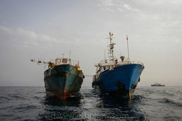 Nigeria, 47 States Sign Fishing Vessel Safety Declaration
