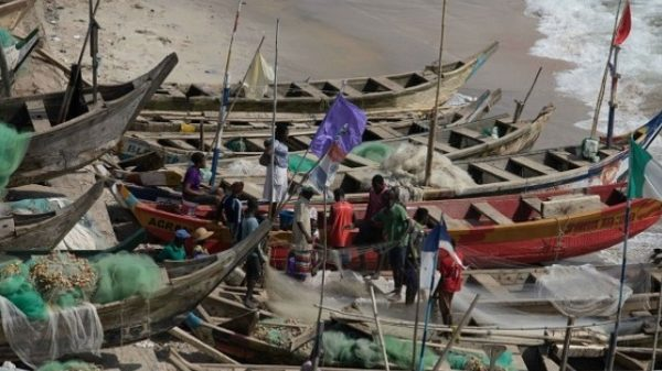 FG Beckons on National Fish Association to promote fish production