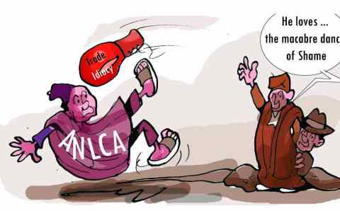 The ANLCA' s Dance of Shame