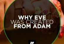 WHY EVE WAS CREATED FROM ADAM