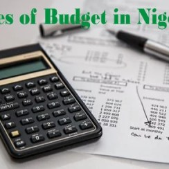 Types of Government Budget in Nigeria and Their Importance